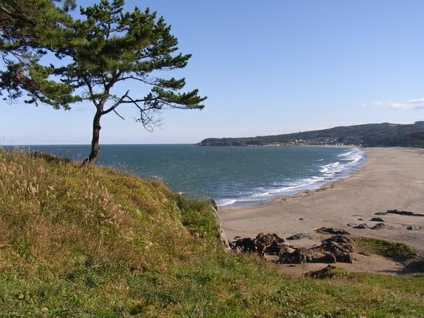 種差海岸 image
