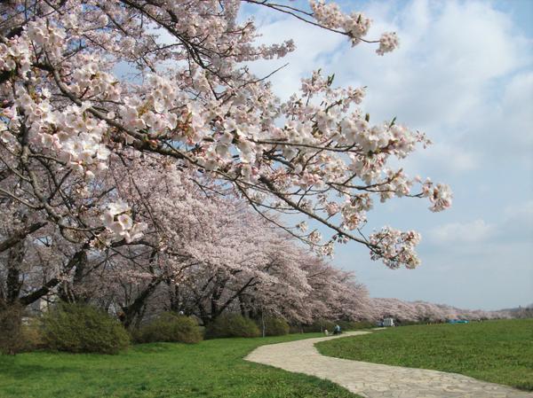 기타카미 시립공원 명승지 image