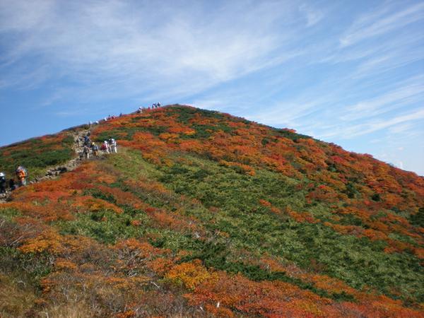 ภูเขาคูริโคมะยามะ image