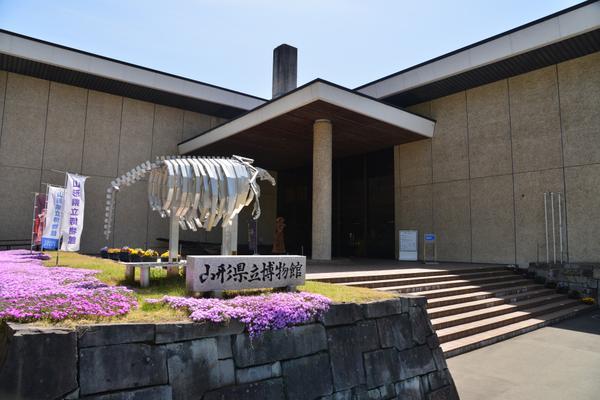 山形県立博物館 image