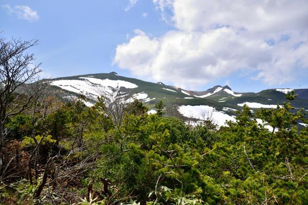 Mt. Adatara image