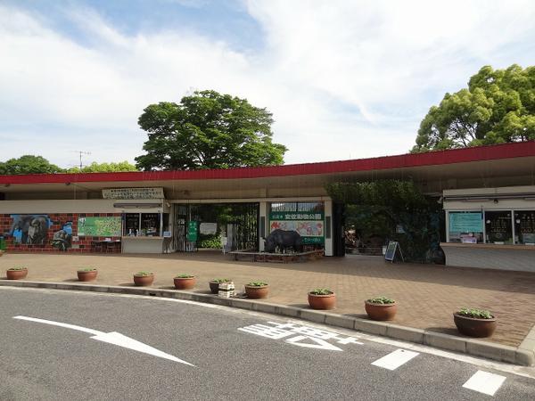 広島市安佐動物公園 image