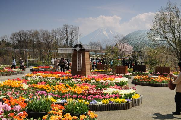 Tottori Flower Gallery (Hanakairo)