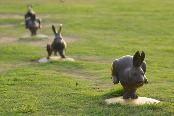 宍道湖兔子 image