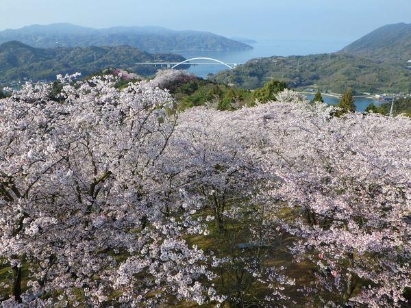 히라키야마 공원 image