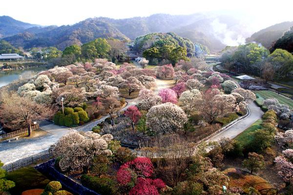 สวนนันระคุ image