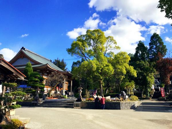 百々山善楽寺 image