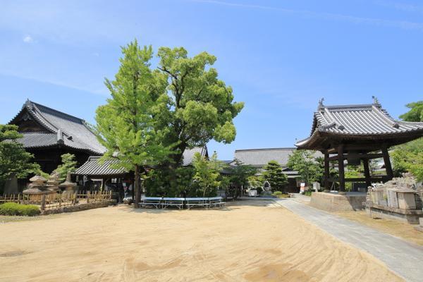 Ichinomiyaji Temple image