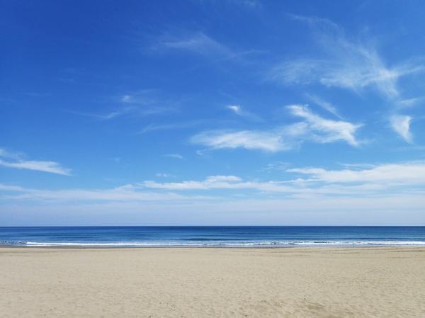 砂浜美術館 image