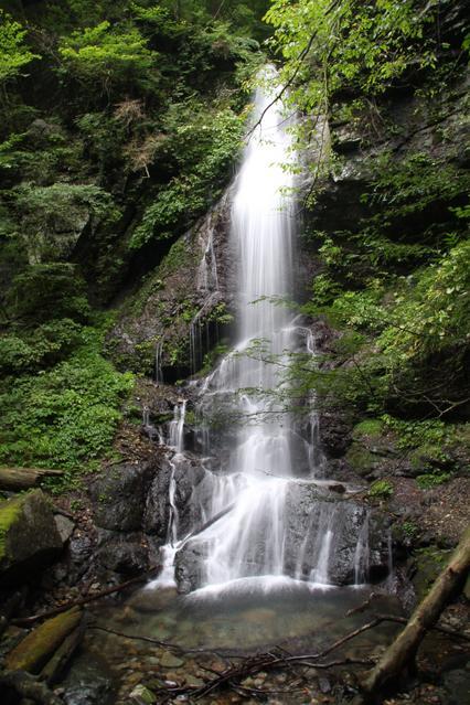 留春の滝 image