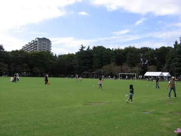 茨城県営洞峰公園 image