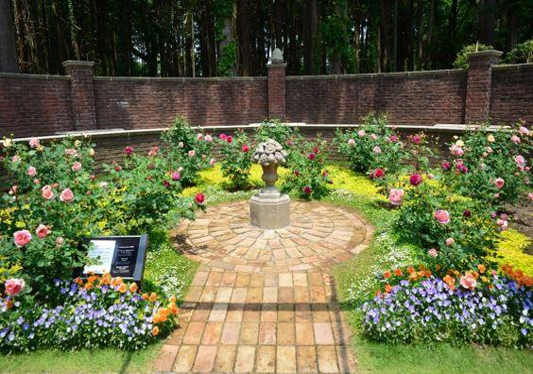 七ツ洞公園 image