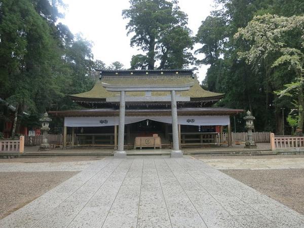 鹿島神宮 image