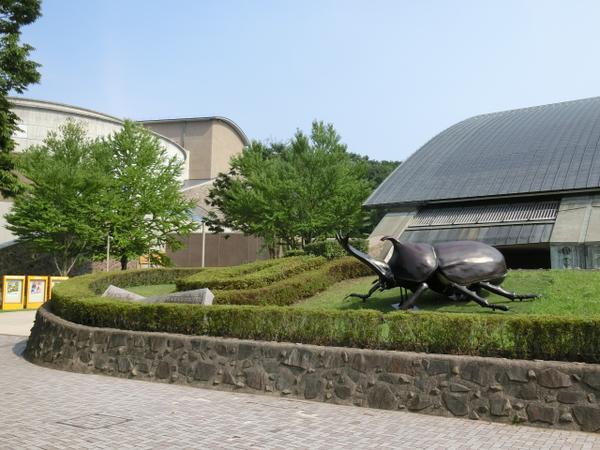 群馬県立自然史博物館 image