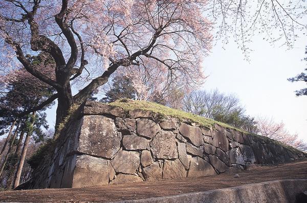 沼田城跡 image