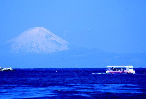 日東商船株式会社 館山 海中観光船「たてやま」 image