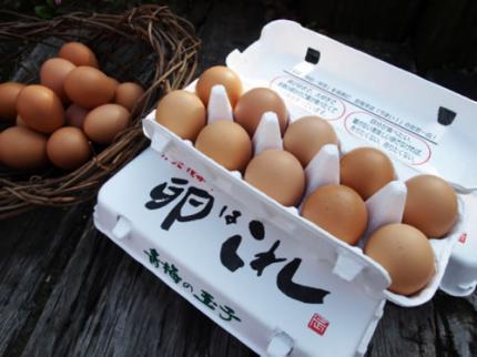 주식회사 다마고 클럽 점포 image