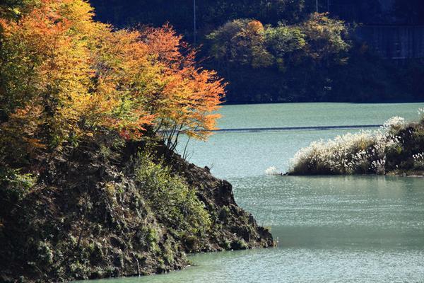 ทะเลสาบชิจิบุ image