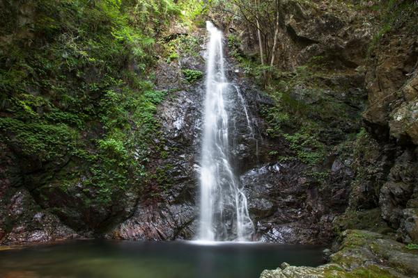 払沢の滝 image