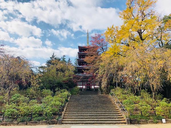 本土寺 image