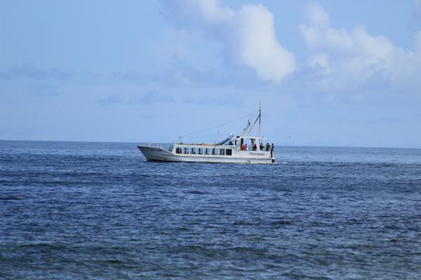 鯛の浦遊覧船 image