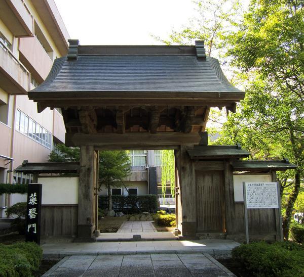 千葉県立中央博物館 大多喜城分館 image