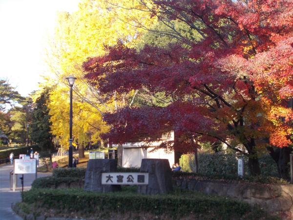 大宮公園 image
