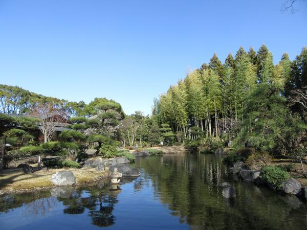 所沢航空記念公園 image