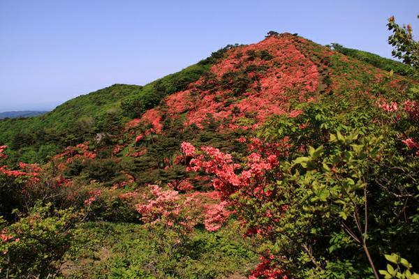 徳仙丈山 image