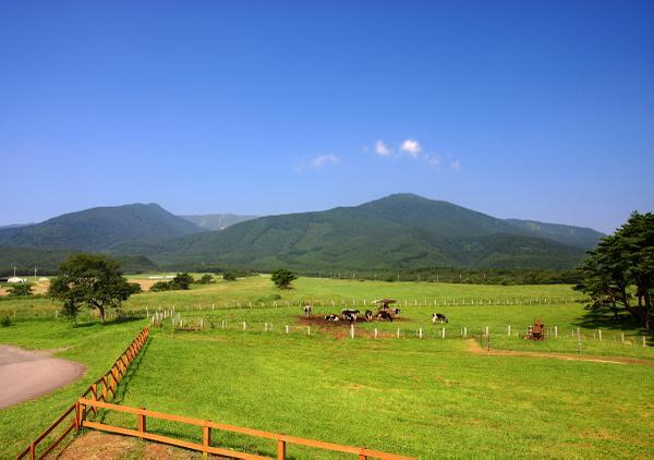 交流牧场 Heartland image