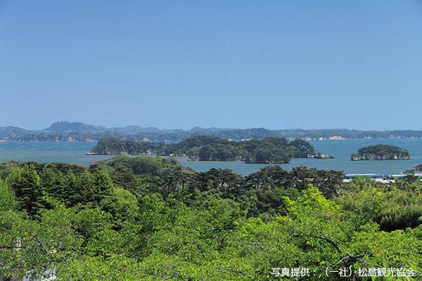 新富山展望台 image