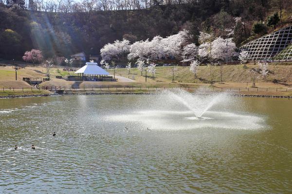 天童公園 image