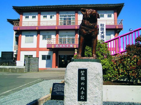 秋田犬会館 image