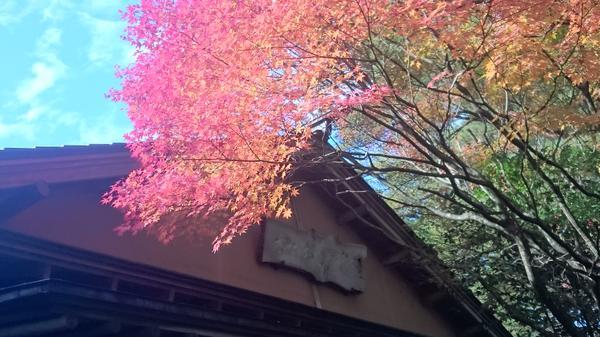 Kimura Tea Ceremony Museum image