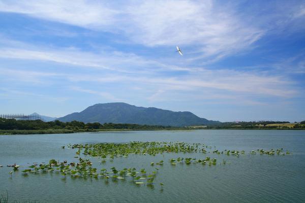ทะเลสาบซากาตะ (สวนสาธารณะทะเลสาบซากาตะ) image
