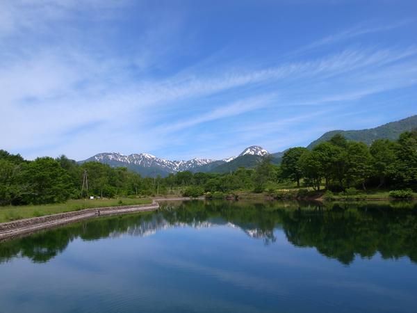 笹ヶ峰牧場 image