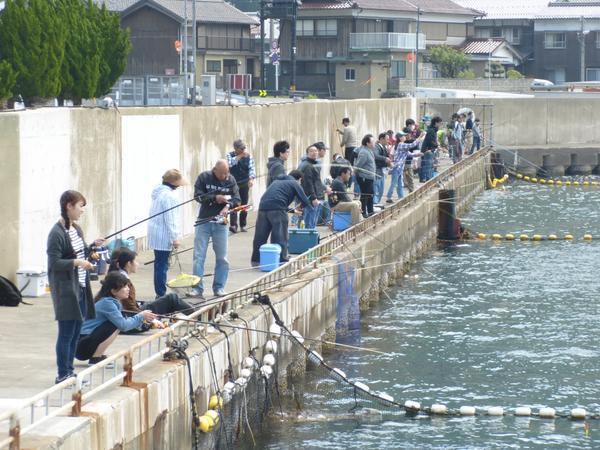 海釣り公園みかた image