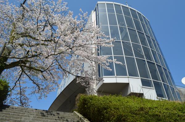 福井市自然史博物館 image