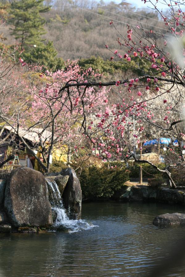 바이린 공원 image