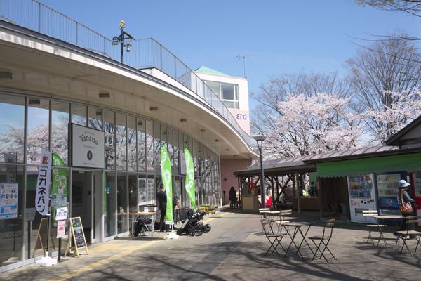 道の駅 柳津 image