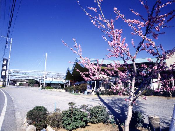 浅間園 image