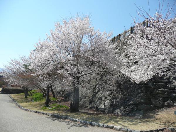 마이즈루성 공원 image