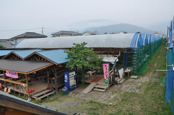 くぬぎ観光農園 image