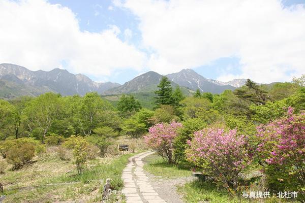 美し森 image