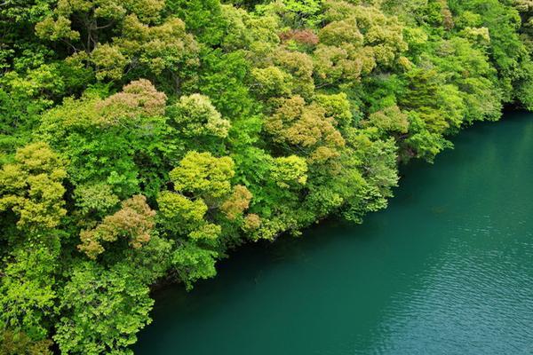 나나이로 댐(나나이로쿄) image