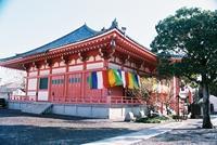 津観音(恵日山観音寺) image