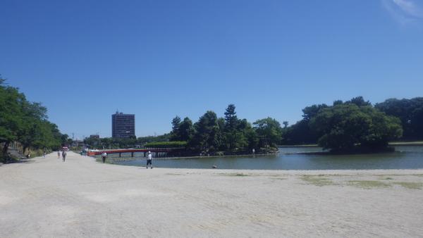 天王川公园 image