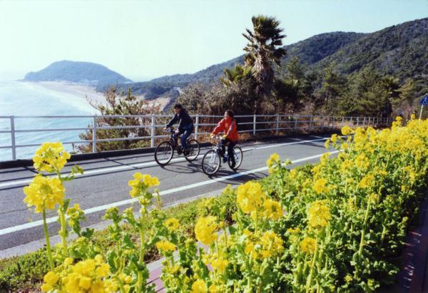 渥美サイクリングロード(田原豊橋自転車道) image