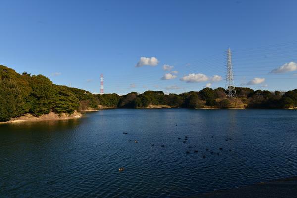 佐布里池 image