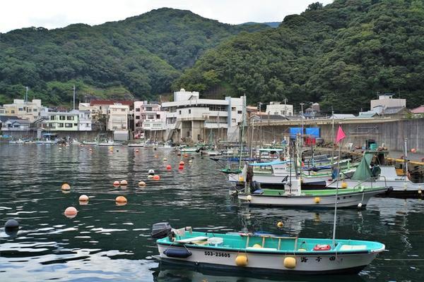 田子漁港 image